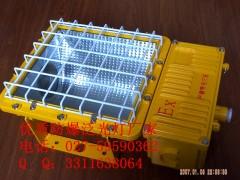 NFE010防爆泛光燈,NFE010-M250W,M400W