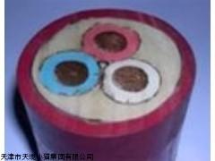MYPTJ高压橡套电缆价格供应MYPTJ矿用高压橡套电缆厂家