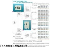 LDX-DHG-9240A 全国包邮电热恒温鼓风干燥箱新款