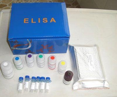 大鼠雌三醇(E3)ELISA试剂盒说明书