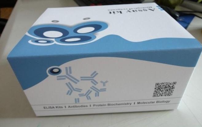 大鼠抑制素B(INH-B)ELISA试剂盒