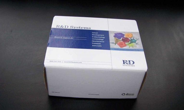 大鼠游离前列腺特异性抗原(fPSA)ELISA试剂盒