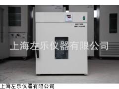 立式鼓风干燥箱70LDHG-9070A