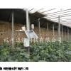 杭州温室大棚控制系统,温室大棚建设要求