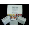 猴白介素17(IL-17)ELISA试剂盒新品促销