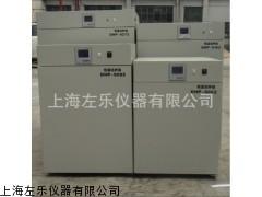 80L电热恒温培养箱上海厂家DHP-9082