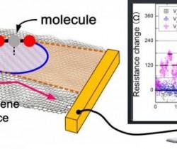 科学家研发石墨烯材料传感器可检测分子级气体浓度变化