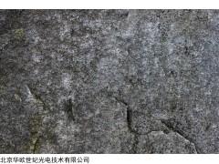 广东矿石分析仪价格