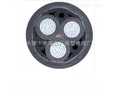 批发yjlv22-10KV-3*70高压铝芯电力电缆