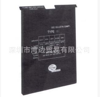 Fireye Fuse For Mec120 OEM 23-197