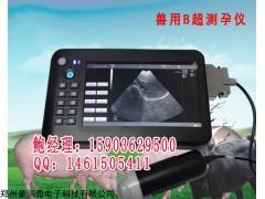 郑州豪润奇动物妊娠诊断兽用B超厂家直销