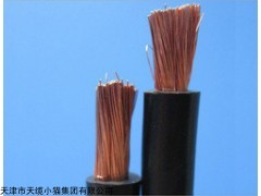 FEMR铜芯乙丙缘护套高压电机绕组引接软电缆