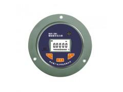 RJ-101南京数字压力表厂家,轴向数字压力表价格