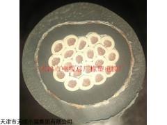 现货供应YQW-J电葫芦电缆厂家