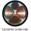 交联电力电缆YJV3*50外径,YJV2*50电缆重量