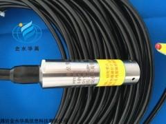 HY1001压力式水位计价格