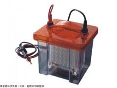 Mini VE1100迷你垂直转印电泳槽 (蛋白电泳槽)厂家