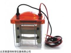 迷你垂直电泳槽 Mini VE1600,蛋白电泳槽