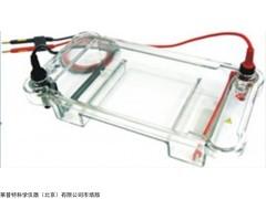 多用途水平电泳槽HS 120,核酸电泳槽