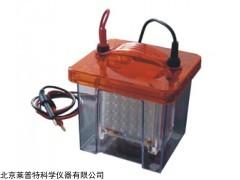 Mini VE 1100 迷你垂直转印电泳槽 (蛋白电泳槽)