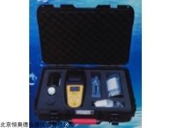 余氯二氧化氯五参数检测仪H5500