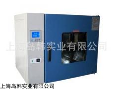 台式250-35GT电热恒温鼓风干燥箱 上海鼓风干燥箱