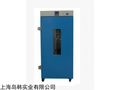 DHG-9920A 立式250°电热恒温鼓风干懆箱