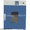 DHG-9030A立式250°电热恒温鼓风干懆箱