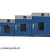 DHG-9240A恒温干燥箱立式鼓风干燥箱