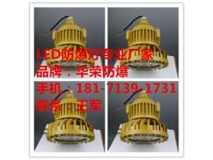 BLD130LED防爆泛光灯,BLD130-60W