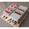 BDX52-2/50K100XX(铸铝)防爆动力检修箱定做