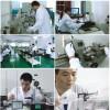 安徽界首量具校正,量具校准-最优惠最权威第三方检测认证机构