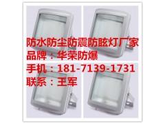 華榮GT301-L70W100W150W防水防塵防眩燈