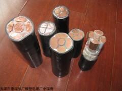 天津船用电缆-CEFR船缆
