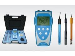 TW-6196便携式多参数水质分析仪