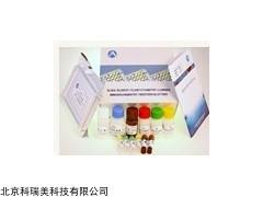 小鼠IL-2 ELISA試劑盒價格多少