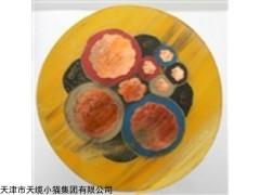 武汉MCP矿用采煤机电缆国标MCPT橡套电缆厂家