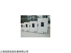 立式电热恒温鼓风干燥箱,DHG-9030B精密高温干燥箱