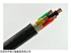软芯聚氯乙烯绝缘阻燃电缆ZA-RVV 10平方价格