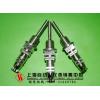 WZP铂电阻元件,WZCM-201B端面铂电阻