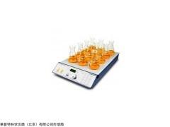 北京十二位磁力搅拌器,MS-12十二位磁力搅拌器