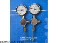 WTYY2-1021-Z虹德供应防震压力式温度计