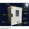 上海培因立式鼓风干燥箱DHG-9240A 数显鼓风烤箱