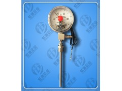 WTYY2-1021-D虹德测控供应压力式温度计