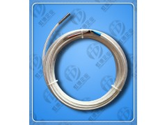 WZP2-6.4/7c双支铂热电阻