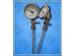 WTYY-1035虹德测控供应压力式温度计
