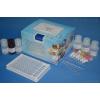 KIF1A试剂盒