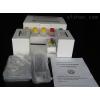 MIP3a试剂盒