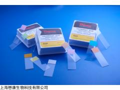 ColorFrost™ Plus防脱载玻片(淡紫色)赛默飞