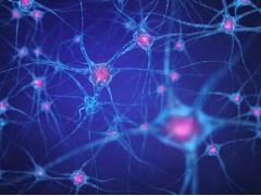精品细胞,ECA109细胞,人食管癌细胞